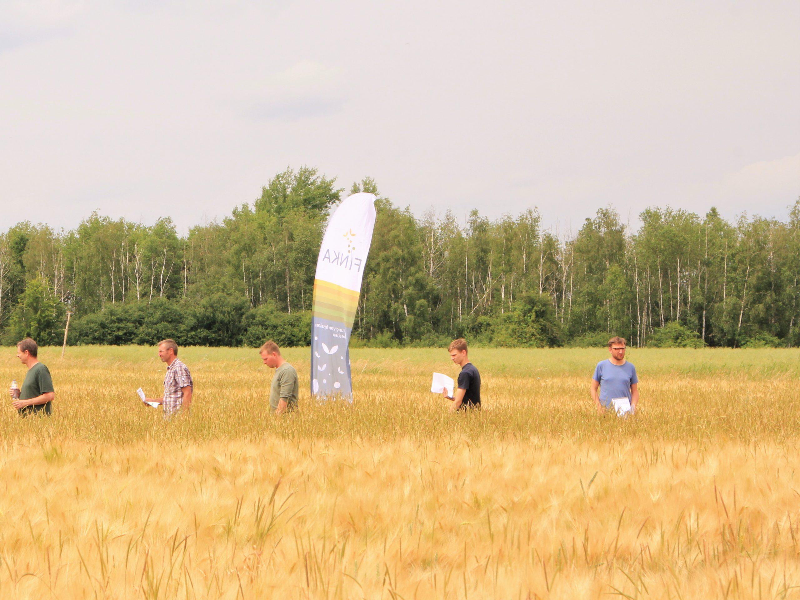 FINKA Feldtag im gerstenfeld von Henning und Ole Harms 24.06.2021 Foto: BVNON